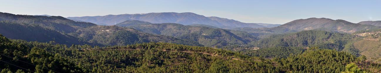 Un magnifique panorama sur la haute vallée de Cèze , le mont Lozère et le massif du Tanargue